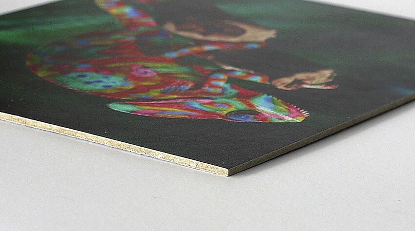 print op karton - display board -print op plaatmateriaal-print op Eskscreen-detail