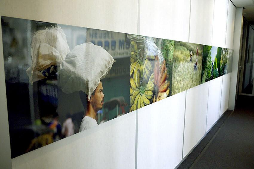 foto en expositie- professionele fotoafdrukken - wanddecoratie